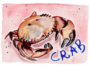 crab2x