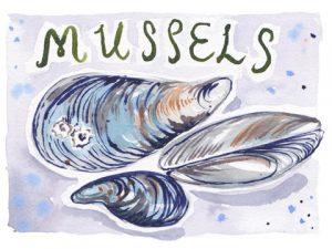 mussells2x